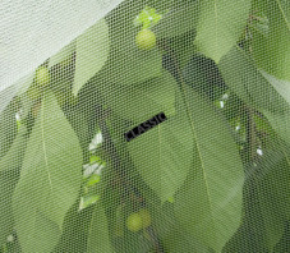 Alt'Mouche (Filet Anti-Insecte)