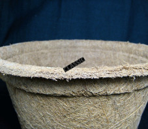 Pot de repiquage 100% fibre de coco