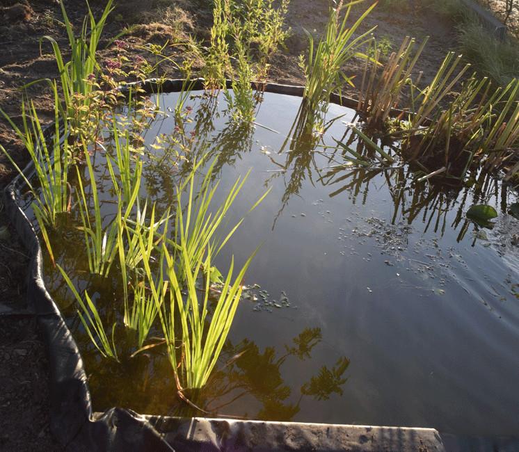 Bâche  pour bassins AquaFlexiLiner EPDM 1mm